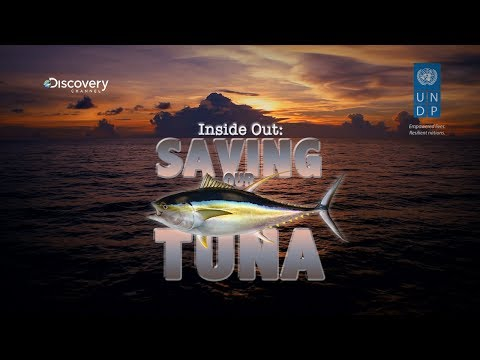 Saving Our Tuna - UNDP-Discovery Channel Documentary