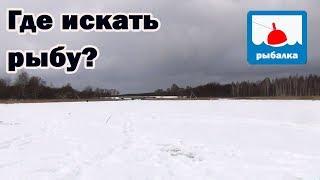 Как искать рыбу на новом водоёме зимой + отчёт о рыбалке в январе