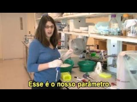 BLOSSOMS Using DNA to Identify People (Portuguese Subtitles)