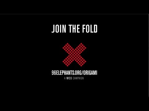 Elephant Origami Challenge: Join The Fold | 96 Elephants