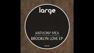 Anthony Mea   No Problem