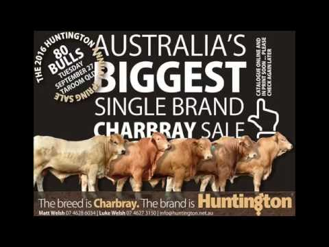 "Check OUT all the action from ""The 2016 Huntington Annual Spring Sale"" Taroom QLD"