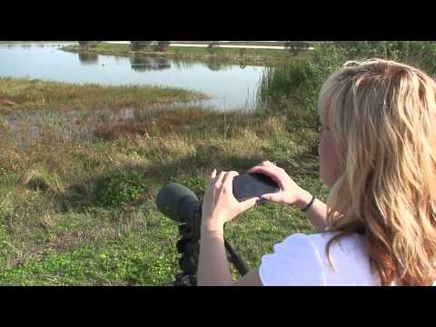 Digiscoping at the Viera Wetlands, Florida