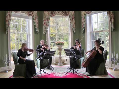 Mamma Mia (ABBA) Wedding String Quartet