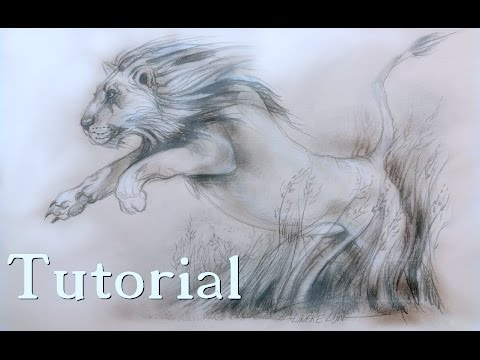 easy-lion-jumping-for-beginners-drawing