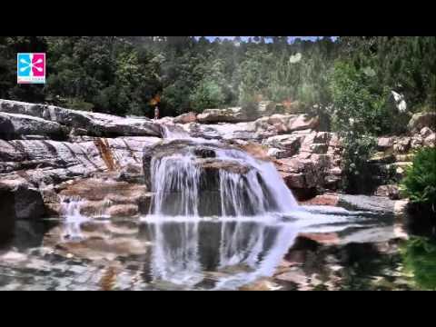 Peaceful Morning Music - Indian Flute & Tanpura   432Hz