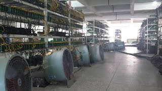 Bitcoin фермы Китая: взгляд изнутри | BitNovosti.com