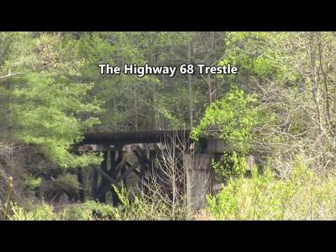 TVRM 70 Car Freight Run on the Hook & Eye