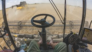 POV/GoPro/driver view - CASE IH Axial Flow 8240 + MacDon FD135, CR9.80, Optum 270 + Perard