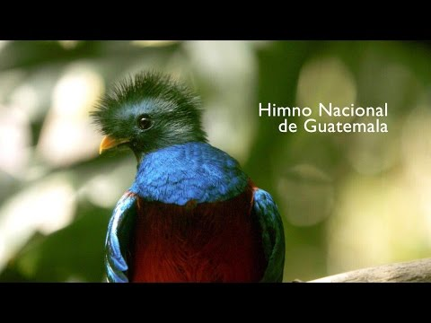 HIMNO NACIONAL DE GUATEMALA 2016