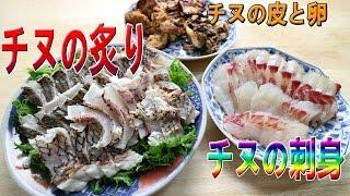 チヌ(クロダイ)の料理をしてみました 炙り、刺身などなど