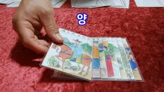 닭띠 날 오늘의운세 9월10일(금) 타로운세 및 일진 / 부적 제작 문의 010-9928-9191 마스터