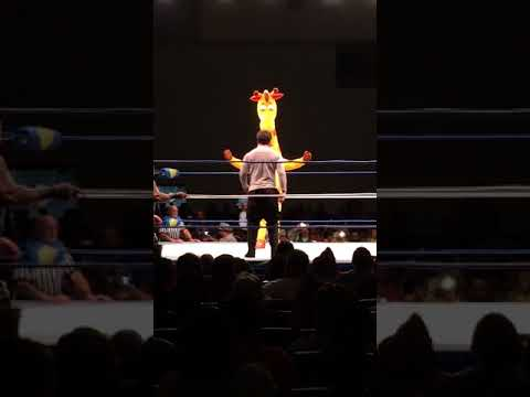 The Toys 'R' Us Giraffe Entered A Royal Rumble And Fought A Vampire