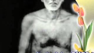 GURUDEVAKARNAMRITHAM (Sree Narayana Guru Songs)- Sree Vassudeva Ashtakam