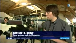 Journal 19/20h du 31/01/2014 France 3 Pau Sud Aquitaine TNLA 2014 12 pieds pour 4 sabots
