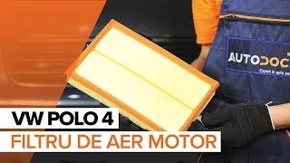 Manualul proprietarului Polo 6n2 online