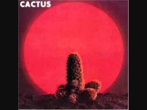 You Cant Judge A Book  The  ~ Cactus