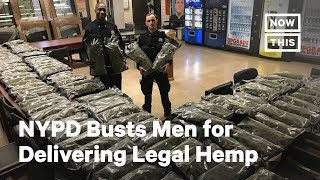 NYPD Busts Men for What They Claim is Legal Hemp | NowThis