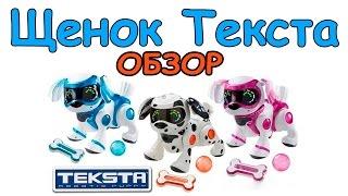 Обзор на игрушку - Щенок Текста (Teksta Robotic Puppy)(Интерактивная собака Teksta Robotic Puppy яркого розового цвета станет прекрасным подарком тем, кто любит животных,..., 2015-04-21T19:08:32.000Z)