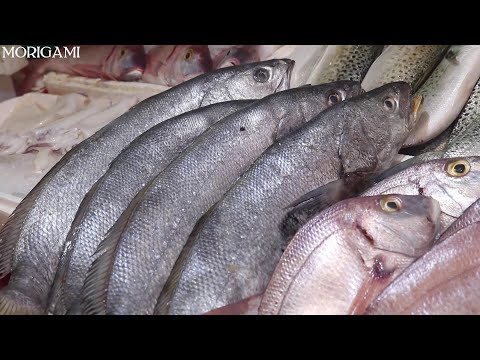 Amazing FISH Market In Morocco | The BEST Fresh Fish Of The Day Market