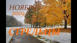СТРЕЛЕЦ. САМЫЙ ПОДРОБНЫЙ ПРОГНОЗ на НОЯБРЬ 2019 г.