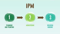 Integrated Pest Management - IPM