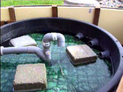 Koi pond filter diy filtration tang home made youtube for Pond water filtration systems home