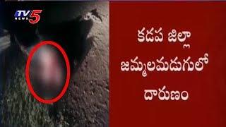 ప్రాణం తీసిన ప్రేమ వ్యవహారం | Kadapa Dist | TV5 News