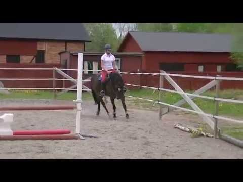 Lisa Fager och Celly´s Tiger Lily - 18/5