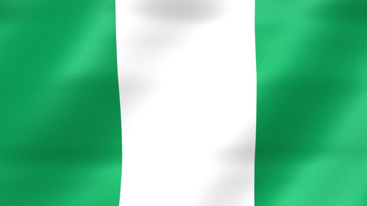 Image result for nigeria flag