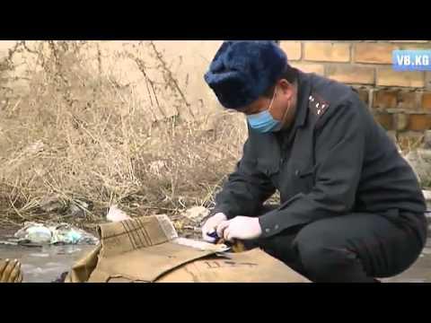 Вечерний Бишкек – новости в Кыргызстане