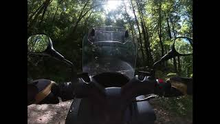 Suzuki Burgman 200cc  The Ride Up To The Top Of Buck Bald Mountain In Tennessee by Old Chainsawbob