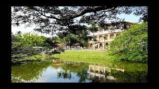 Обзор школы в Коста-Рике. Цена 400 дол. в месяц (международная школа)