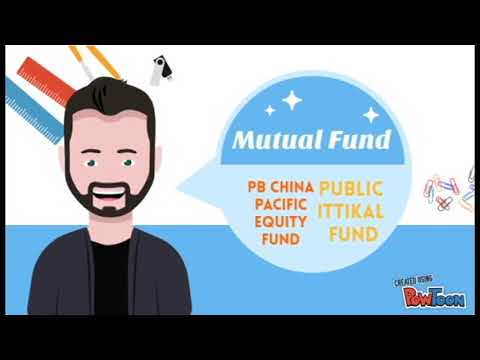 The example of Successful mutual fund in Public mutual