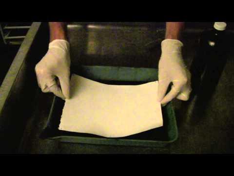 Making a 12% Silver Solution & coating Albumen Paper