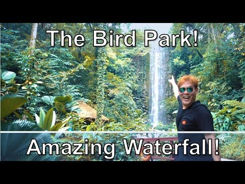 Singapore Jurong Bird Park - An Amazing Waterfall In Singapore!