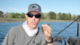 Video My Top 3 Sight Fishing for Bass Tips download MP3, 3GP, MP4, WEBM, AVI, FLV Juli 2018