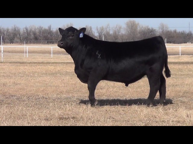 Express Ranches Lot 22