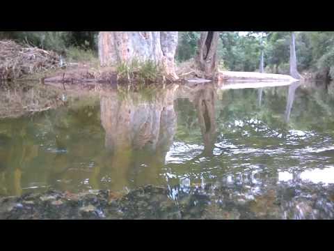 Gundri - Kadambur - Sathyamangalam Road side Water flow 1