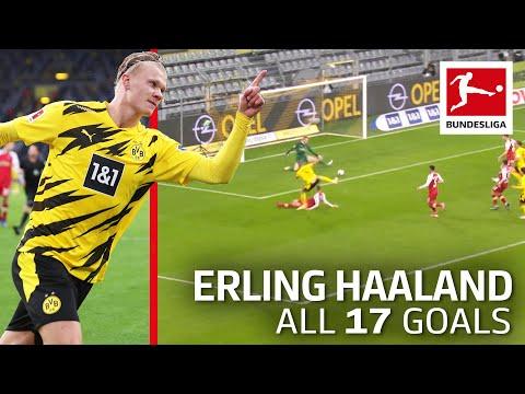 Erling Haaland - 17 Goals in Only 18 Bundesliga Games