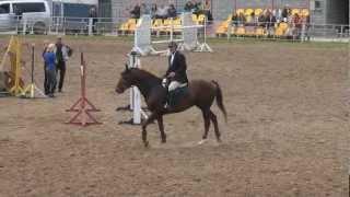 Открытые соревнования по конкуру в Днепропетровске