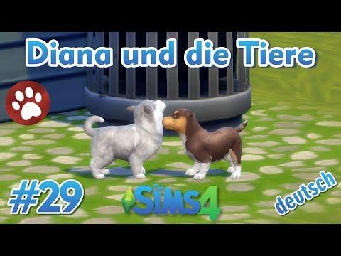 Sims 4 Diana Und Die Tiere 29 Wir Verkaufen Die Welpen Youtube