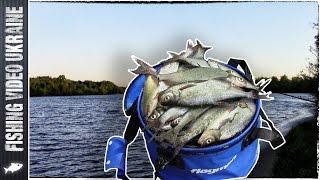 Невероятный клёв крупной белоглазки (15-16 мая 2015 г.) HD | FishingVideoUkraine(В этот раз мы пришли на Десёнку за крупной рыбой! Ловить мы решили вечером на закате, всю ночь, и утром до..., 2015-05-18T17:33:51.000Z)