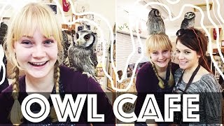 OWL CAFE in Japan!