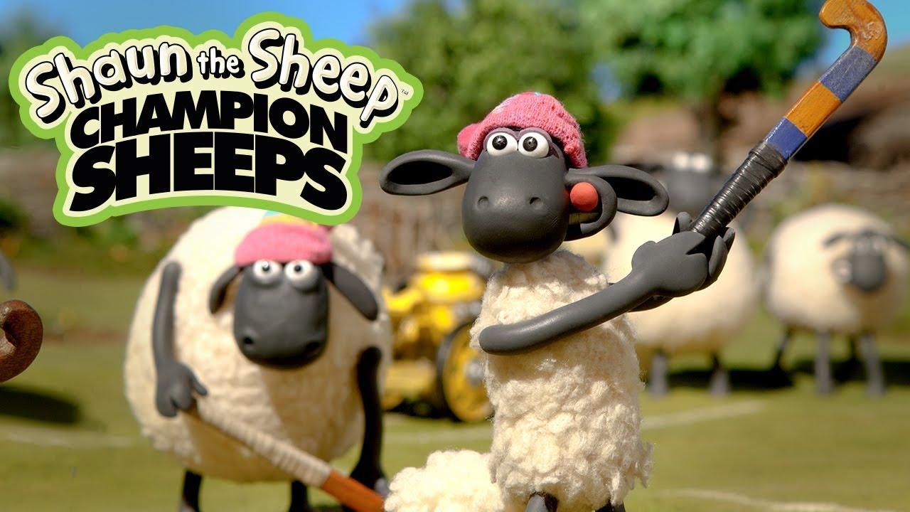 Khúc côn cầu | Championsheeps | Những Chú Cừu Thông Minh [Shaun the Sheep]