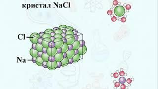 Хімічний склад живих організмів. Мінеральні речовини. Вода. Он-лайн уроки