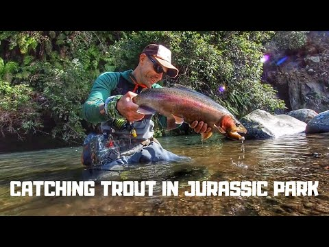 FLY FISHING For Trout In A LOST WORLD [New Zealand}