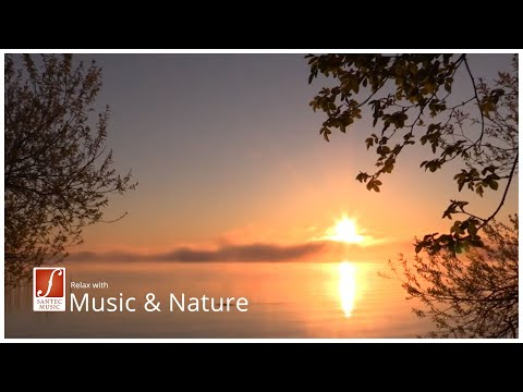Relaxation music with panpipe, harp and string orchestra - Moments of Silence (Santec Music)