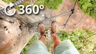 360º Climbing A 75 Meter Tree With No Rope   Pemberton   Australia 4K