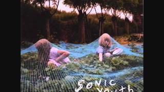 Watch Sonic Youth Sympathy For The Strawberry video